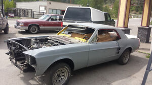 1967 mustang coupe, shelby project, fastback swap, magnum 500
