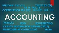 Professional Accountant for Tax and Accounting