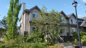 3 properties for sale in Edmonton for $100K total. NO QUALIFYING