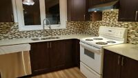 Renovated and spacious 3-bedroom house in DOWNTOWN w/ parking