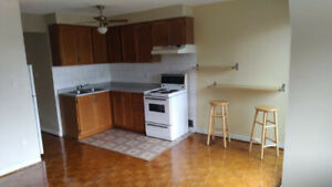 2BR DOWNTOWN APARTMENT (SHERBOURNE & GERRARD)