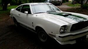 Rare 1977 Mustang Cobra II