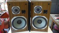 Speaker - haut-parleur - 2 modèles