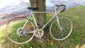 Vintage CCM Formula 2 Road Bike
