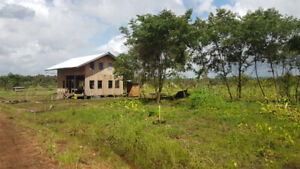 Land in Belize for sale