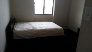 Room Available in Great Two Bedroom Apartment Hamilton