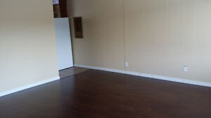 3 Bedroom House for Rent in Northside Close to Yellowhead Trail