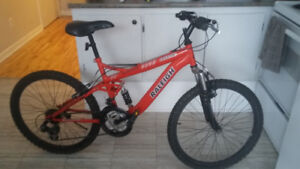 Bicycle de montagne Raleigh