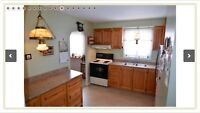 Oak Kitchen Cabinets + counter top
