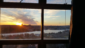 Bright Summer Sublet with View -- 1 Bedroom