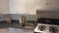 Downtown Townhome for rent 2 bed 2 bath, garage Oct 1st onwards
