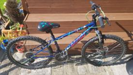 Apollo Interzone Jr mountain bike