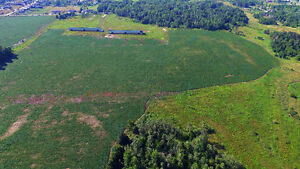This Property Offers 95 Acres (Per Geowarehouse) Of Potential!