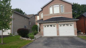 Newly Renovated 4 + 1 bedroom house for Rent in Peterborough