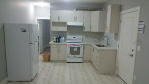 2 Bedroom Basement Suite Abbotsford