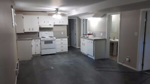 Renovated 2 bedroom basement suite.heat/electric included.