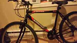 Perfect for christmas 21 speed excellent condition