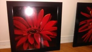 Black framed red flower wall pictures