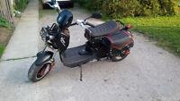 MOTORINO XPd e-Bike