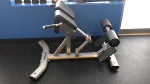Life fitness back extension