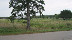 Land for Sale in Petitcodiac REDUCED PRICE