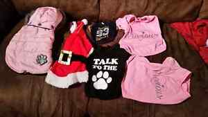Group of dog clothes Sarnia Sarnia Area image 1
