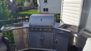 Martin stainless steel propane BBQ