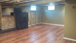 HUGE ROOM APPROX 400SQ WITH GAS FIREPLACE SOUTH 66ST&19ave