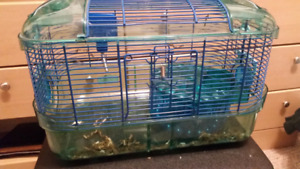 Hamster  cage and food