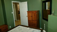 ROOM FOR RENT $530