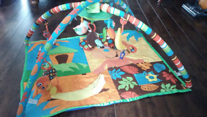 Baby play mat and tummy time toy