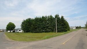 Price is firm  Land and House over an acre of land. Nice big lot