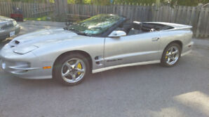 1999 30th Anniversary Trans Am  Ram air convertible.