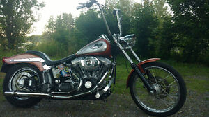 Blow the stink off ya fast hundredth anniversary stroker softail