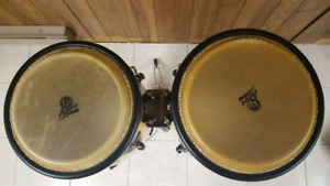 Congo drums, stand, carry bags