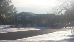 Large 4 bedroom, 4 level split! 1.5 acres!