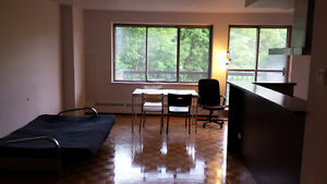 Luna Apartments sublet starting from june 15th to sept 1st