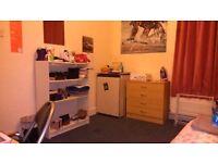 Double Bedroom in Harringey/manor house
