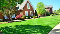 #1 Lawn Care Landscaping Services