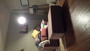 Pull out single bed couch