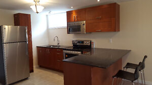 NEWMARKET - Newly Finished Bright Large 2-Bedroom Lower