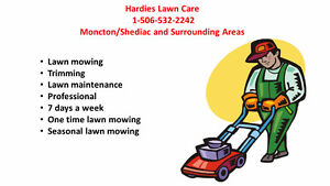 Lawn Care/Mowing and Maintenance