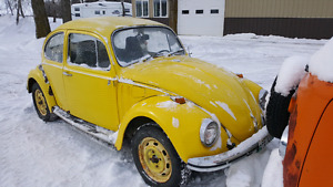 1971 VW Bug project