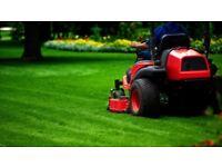 Gardener grass cutting