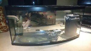 Oceanic 72 Gallon Bow Front Aquarium with matching stand