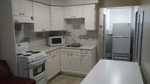 Renovated One Bedroom Apartment – Close to Downtown, RMC and Que