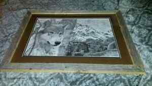 Scenic Pictures And Wolves St. John's Newfoundland image 2
