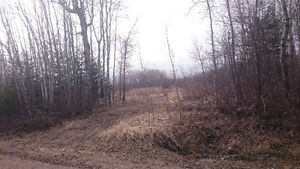 VACANT LAND 155 ACRES     SOLD  !!!!!!!!!!!