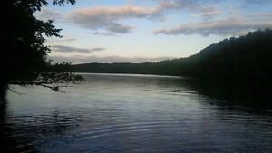 Bancroft Area - Lake L'Amable Property