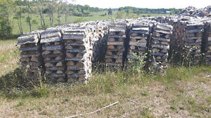 Firewood Peterborough Peterborough Area image 1